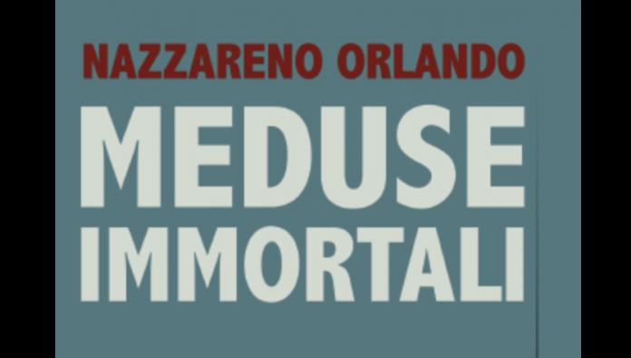 Nazzareno Orlando presenta